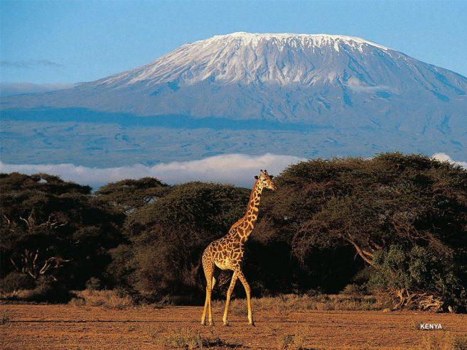 demande visa tourisme Kenya