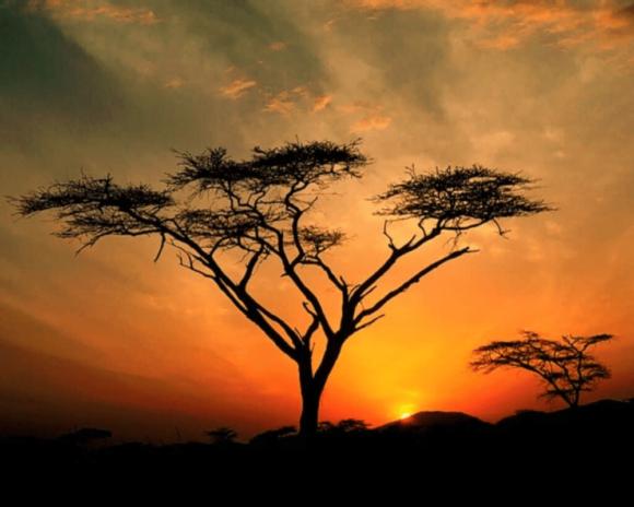 visa est africain rwanda ouganda kenya