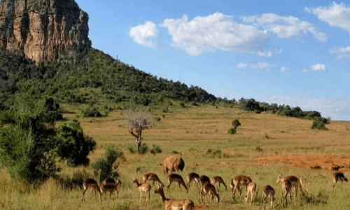 visa tourisme Mozambique