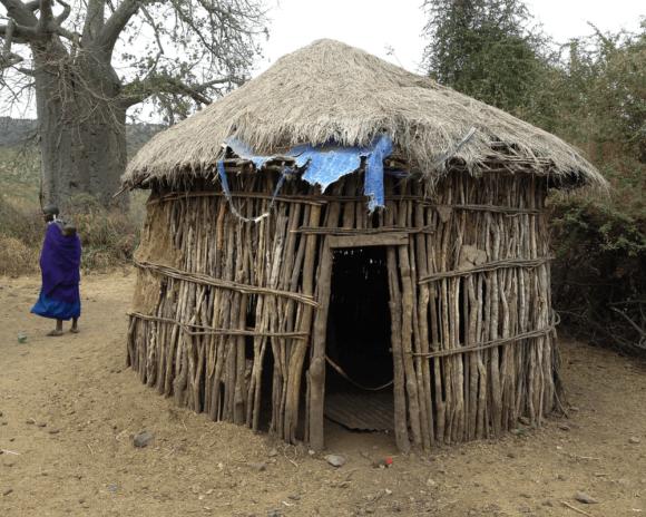 evisa Tanzanie