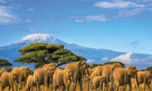 visa tourisme Kenya